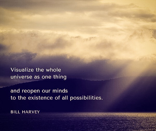 Visualize the whole universe as one thing