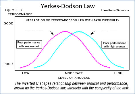 he inverted U-shapes relationship between arousal and performance,  known as the Yerkes-Dodson law, interacts with the complexity of the task.